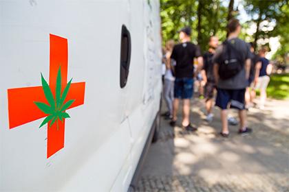 Деньги нерадуют приверженцев марихуаны— Ученые