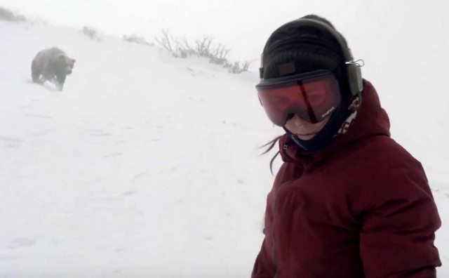 Медведь пробует догнать сноубордистку