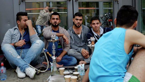 Более 100 сирийских беженцев обучат в Германии специальностям для восстановления Сирии