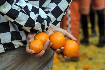 Ученые признали, что цитрусовые фрукты способствуют борьбе слишним весом