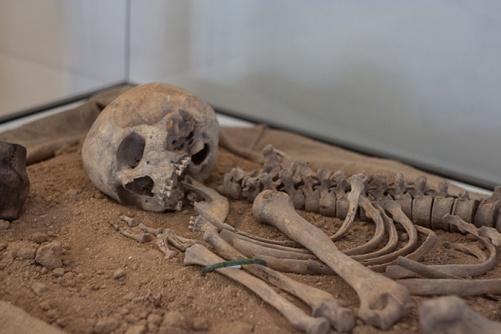Археологи отыскали скелет владельца первого античного «компьютера»