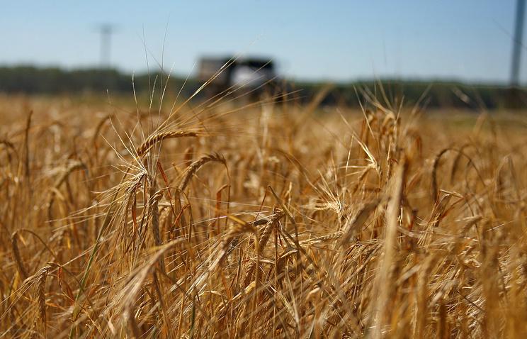 Сельское хозяйство в Российской Федерации вышло изкризиса