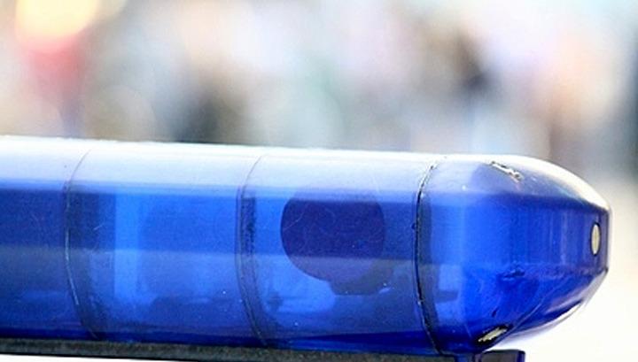 Дети погибли врезультате дорожного происшествия вЛенинградской области
