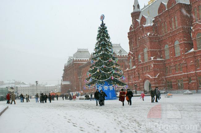Синоптики: грядущая зима встолице будет прохладнее предшествующей